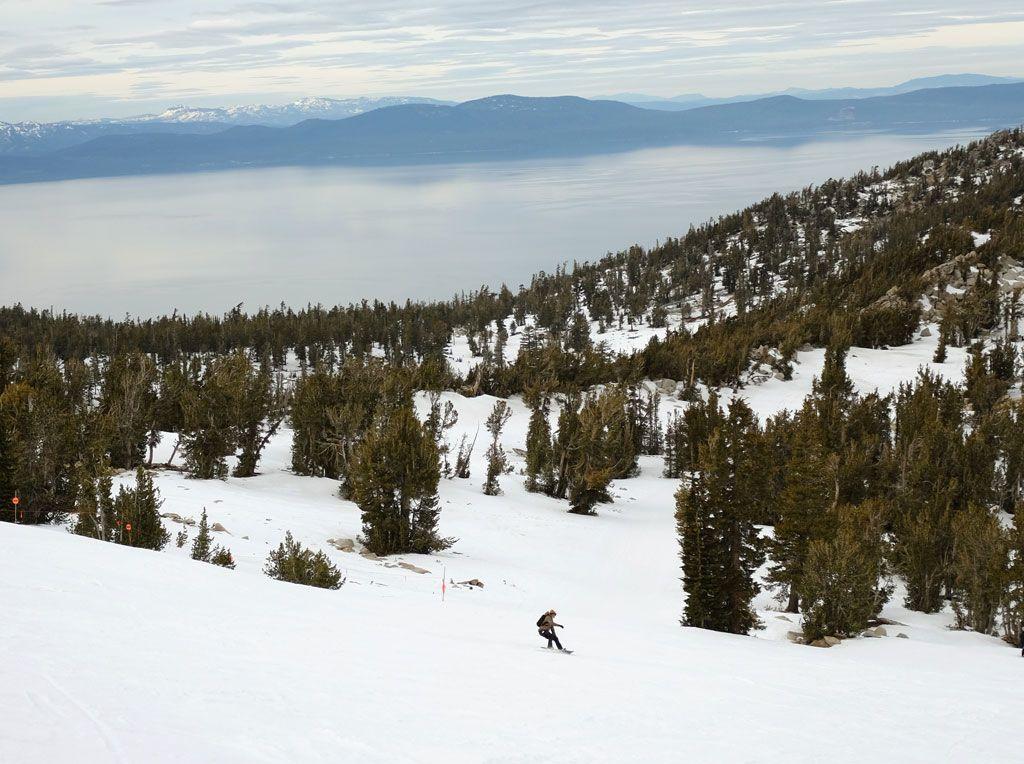 Longboard-Skateboard-Rides-Snowboard